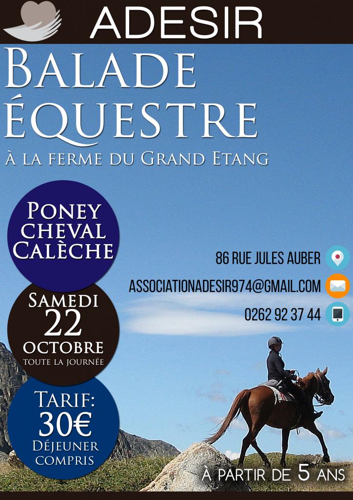 Sortie Equestre