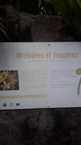 Jardin Botanique UNIR OI 4